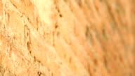 Red brick wall grunge texture video