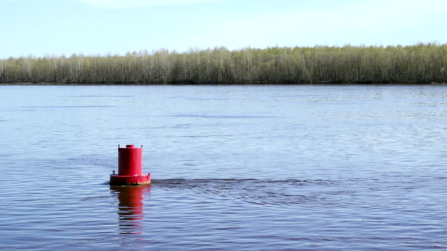 Red buoy on the lake video