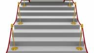 Red Carpet video