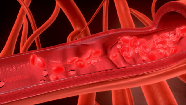 3D red cell flowing in vessel - HD, NTSC, PAL video