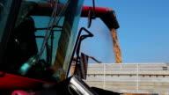 Red Combine Harvester Harvesting A Grain Field video