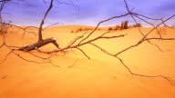 Red Desert Sand Dune Landscape video