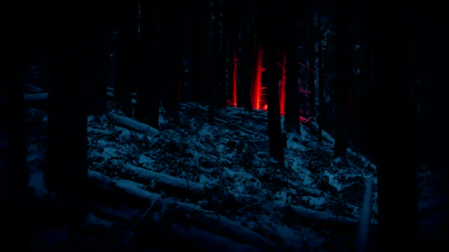 Red Flare Lights Up Snowy Forest At Night video