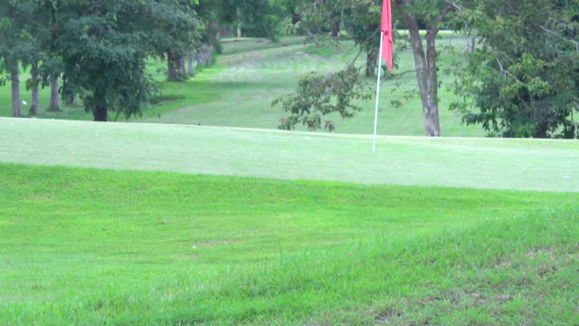 Red Golf Hole Flag Blowing in Wind on the Green video