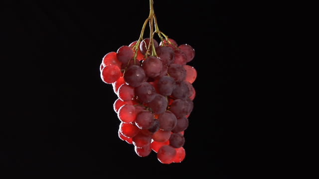 HD: Red Grapes Rotating video