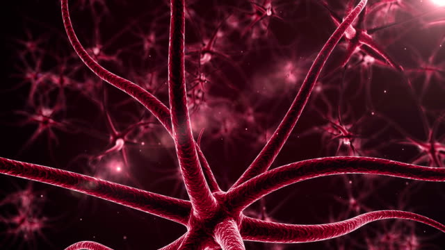 Red Neurons with electric impulses video