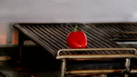 Red pepper on grill video