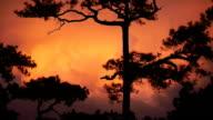 Red sky orange sunset sundown. video