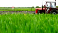 Red tractor in a field planting corn video