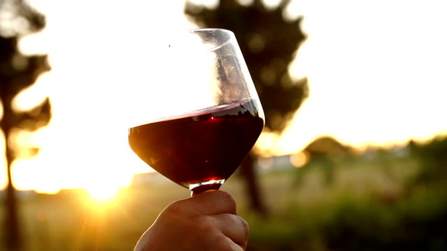 Red wine being swirled in wineglass in slow motion video