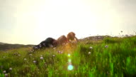 Redhead woman relaxing in a field of flowers video