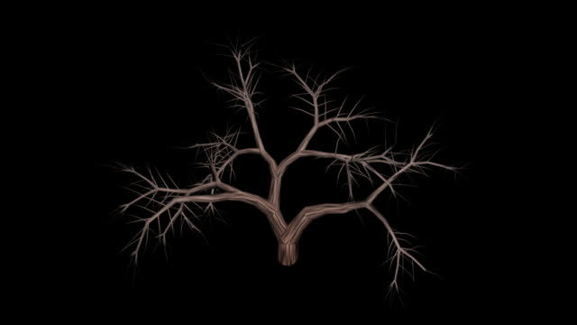 Redwood Dead + Alpha video