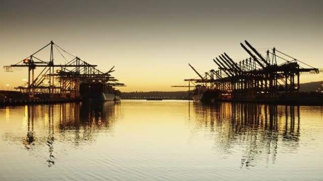 Reflected Container Cranes video