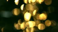 reflected light video