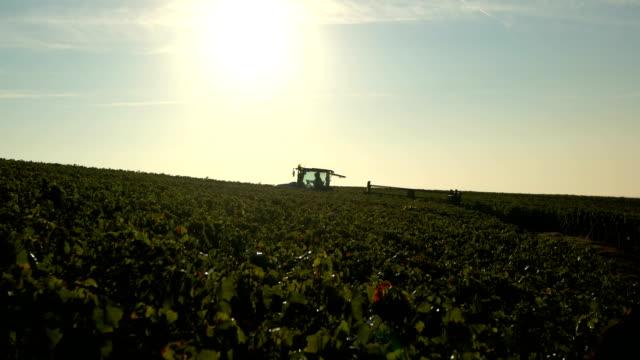 Region champagne vintage tractor vine epernay marne video