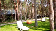 Relaxation area in the forest video