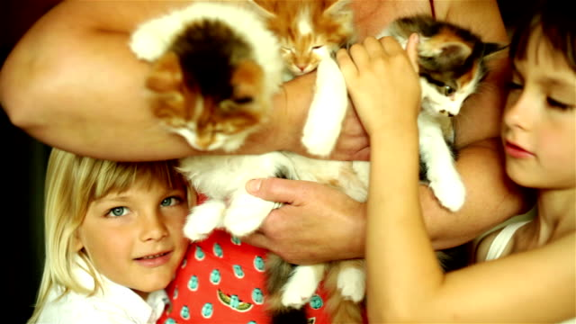 Relaxing family with cats video