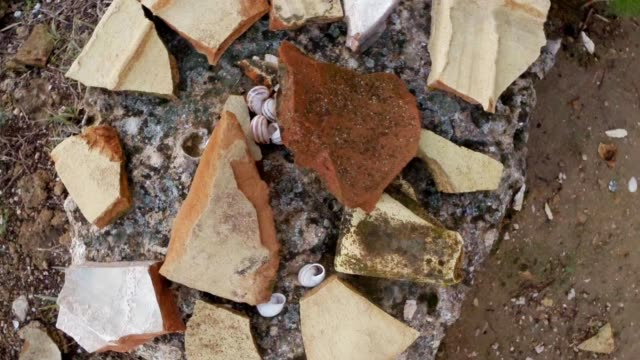 Remainings of tiles Temple of Zeus  ruins antique town Salamis east Cyprus Famagusta video
