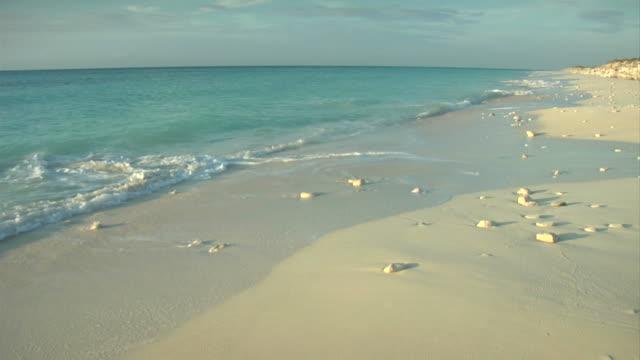 remote beach at dawn video