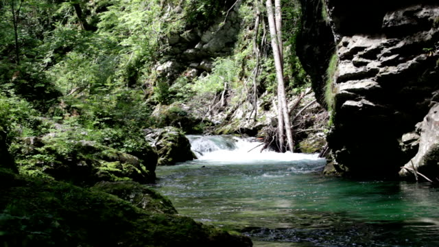 remote control helicopter in picturesque river gorge video