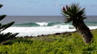 Remote Surf video