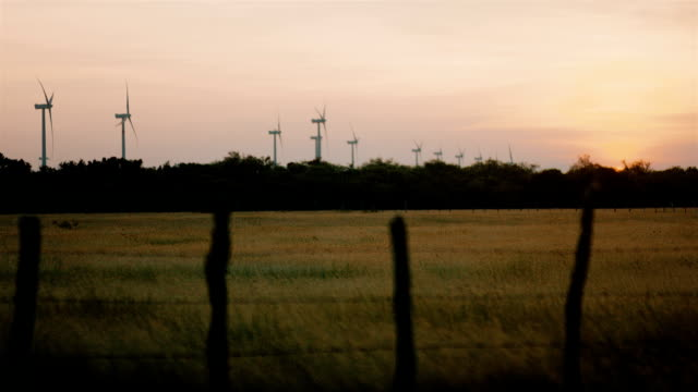 Renewable innovative energy wind farm in the rural ranches of Latin America. Juxtaposing technology and nature working together - Collection video
