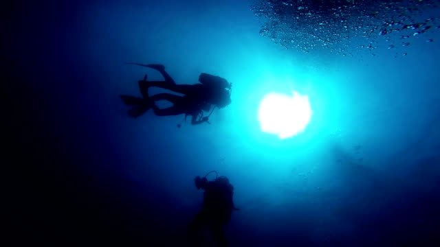 Rescue Divers Learning Rescue Techniques in Open Waters. video
