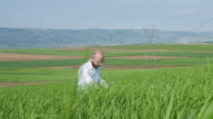 Researcher in field video