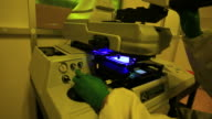 Researcher work with a microscope in laboratory. video