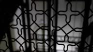 Residential fence. Indoor european pattern fence gate1 video