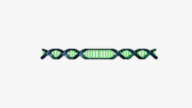 Restriction enzymes video