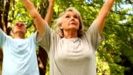 Retired couple doing yoga outside video