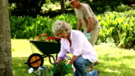 Retired couple gardening together video