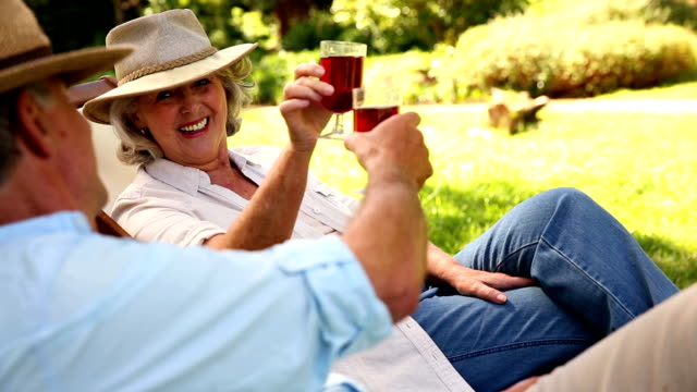 Retired couple sitting in deck chairs drinking wine video