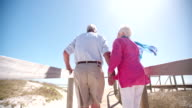 Retired elderly couple walking together at the beach holding hands video