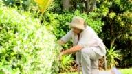 Retired woman gardening video