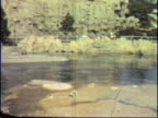 Retro Amusement Park Footage video