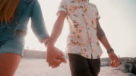 Retro style hipster couple holding hands at the beach video
