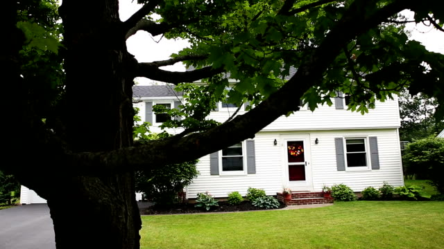 Reveal Home Through Tree in Front Yard video