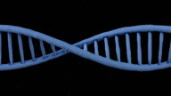 DNA Ribbon Animation - Loop video