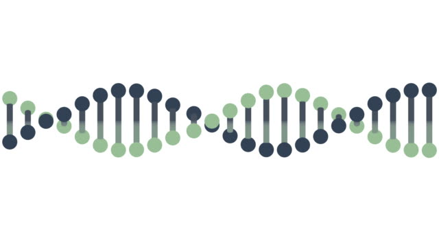 DNA Ribbon animation, seamless loop from 7.06s, LUMA MATTE video
