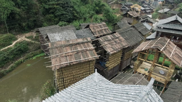 Rice drying in huts in Huanggang dong village in Guizhou China video