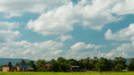 Rice fields with clouds in the sky. video