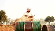 Rice Harvesting video