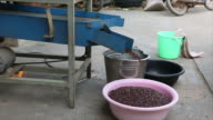 rice mill. video