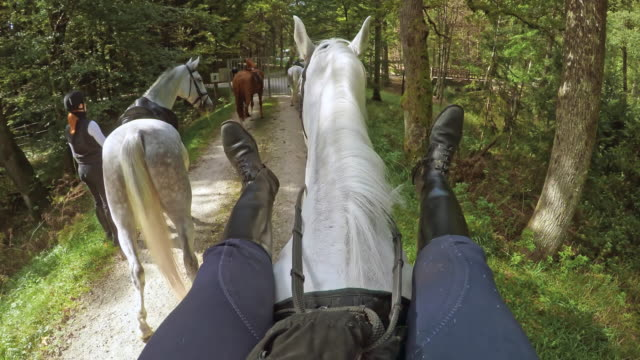 POV Rider stretching her legs on a horse video