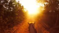 Riding a horse at sunset video