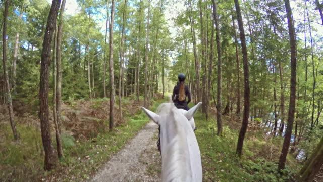 POV Riding a white horse through nice forest video