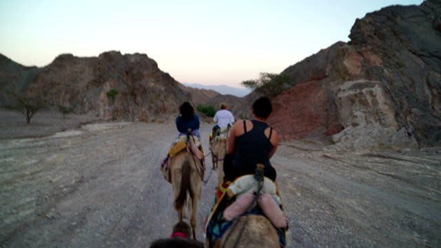 Riding Camels in the Dessert video