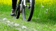 Riding Electric Mountain Bike In Spring (4K/UHD to HD) video